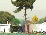 Ejecutan a cuatro personas en Palmar de Bravo; entre ellos  regidor de Quecholac