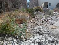 Limpia y dignifica  parroquia de Tepeaca espacios en ex convento franciscano