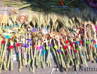 Elaboración de figuras de palmas en Tepeaca, tradición sin igual en el Domingo de Ramos