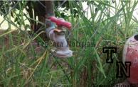 Nuevo aumento a cuotas de agua potable en Tepeaca;casi  300% ha subido en gobierno de  David Huerta
