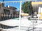 Cumplen un mes sin clases al menos 27 escuelas  de Tepeaca
